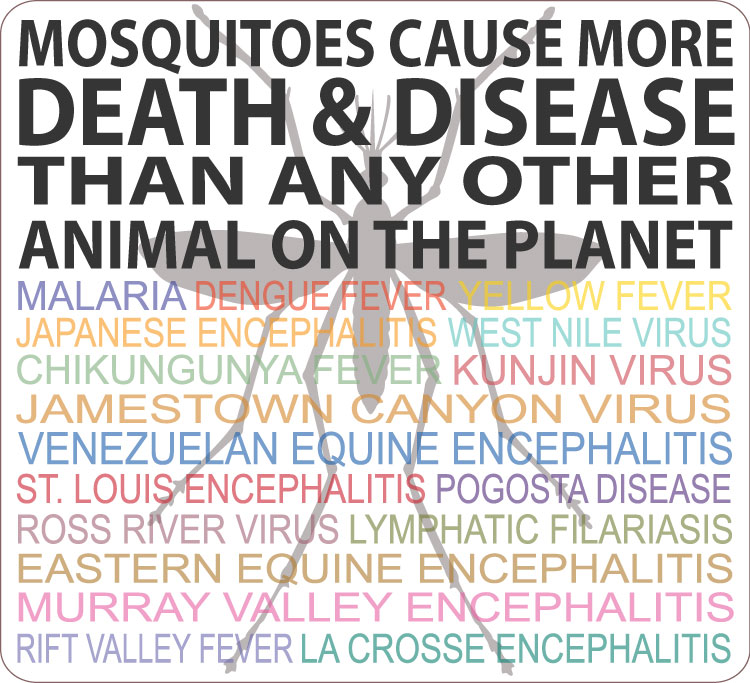 Mosquitoes cause more death and disease than any other animal on the planet