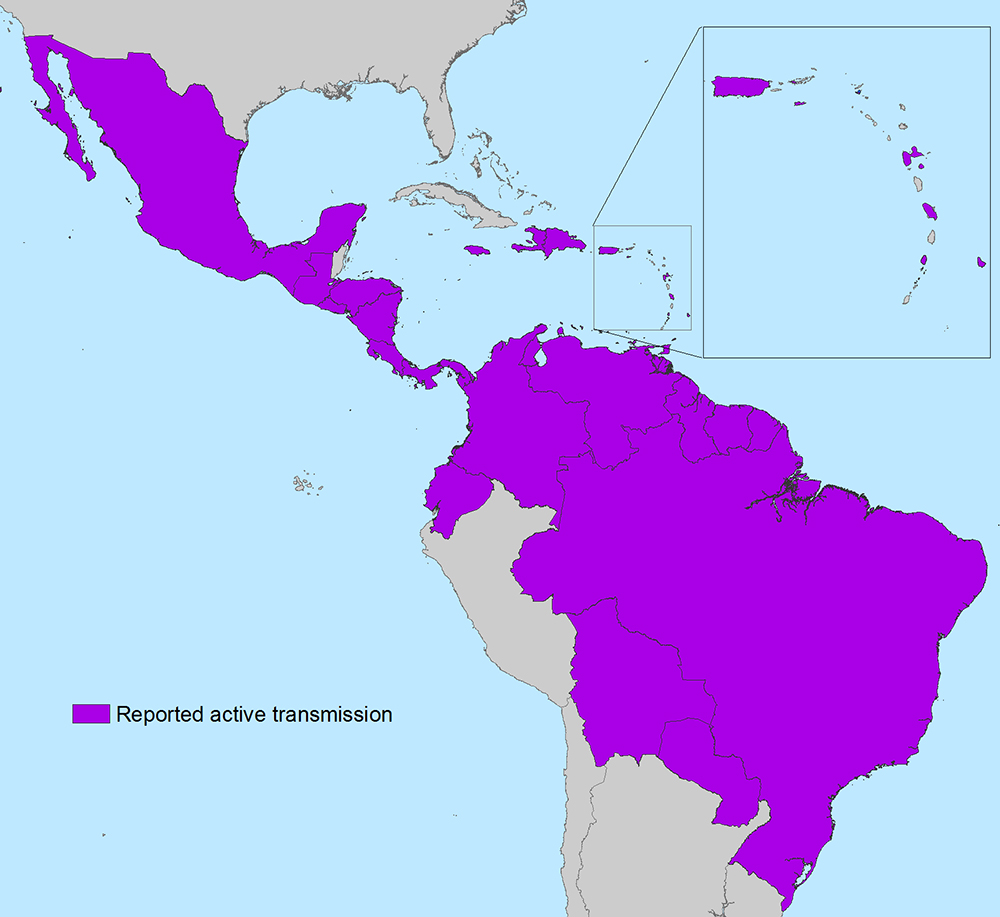 Countries and territories in the Americas with active Zika virus transmission