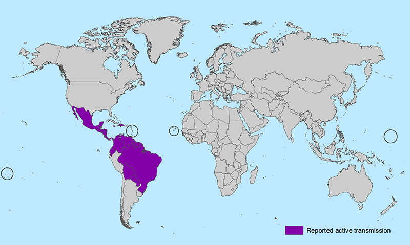 All countries and territories with active Zika virus transmission