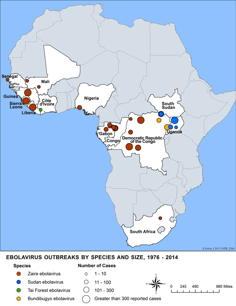 Ebolavirus outbreaks by species and size, 1976-2014