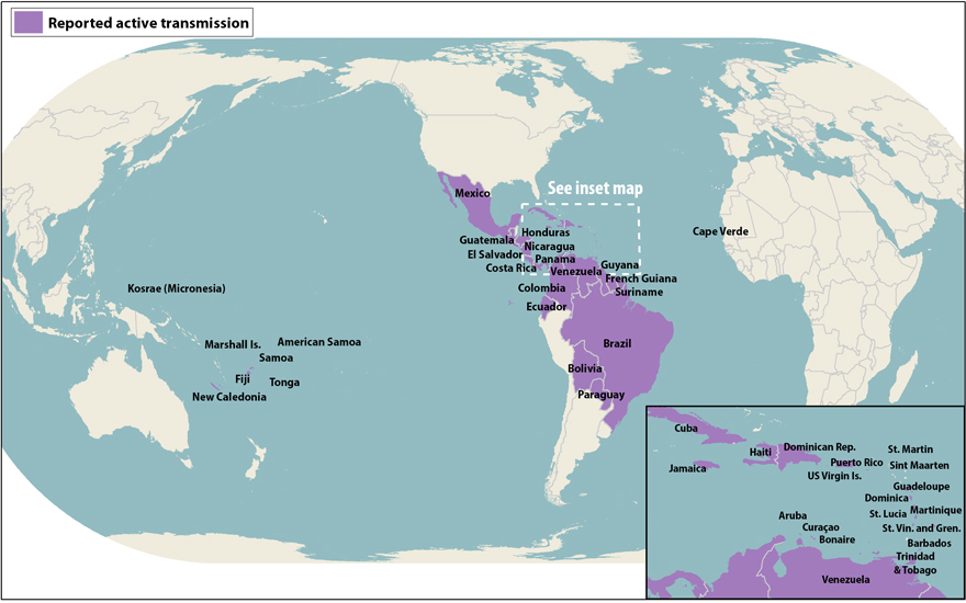 All countries and territories with active Zika virus transmission as of April 13, 2016