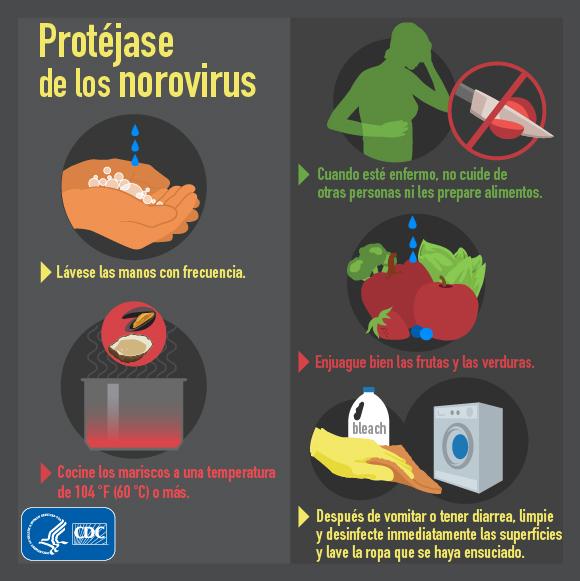 Protéjase de los norovirus