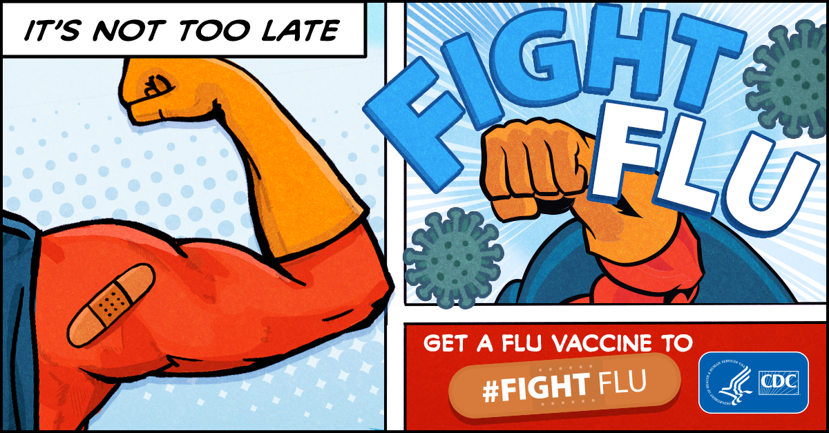 It's not too late : fight flu