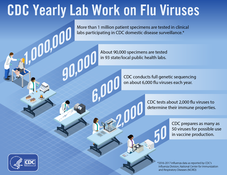 CDC yearly lab work on flu viruses