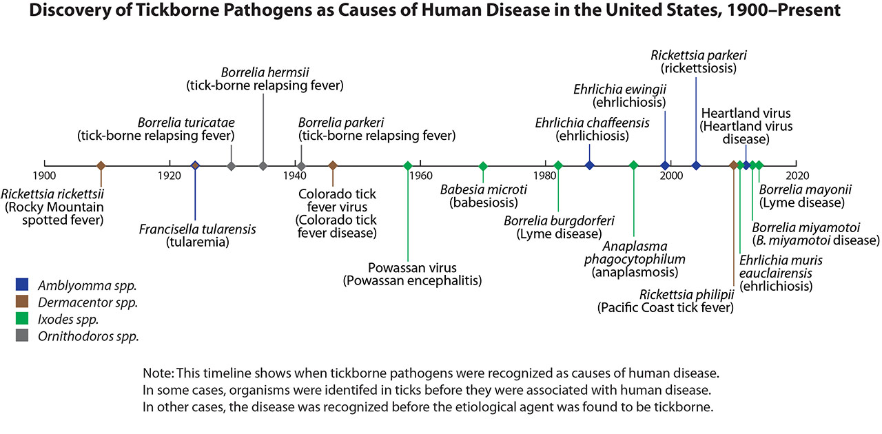 Discovery of Tickborne Pathogens as causes of human disease in the United States, 1900-present