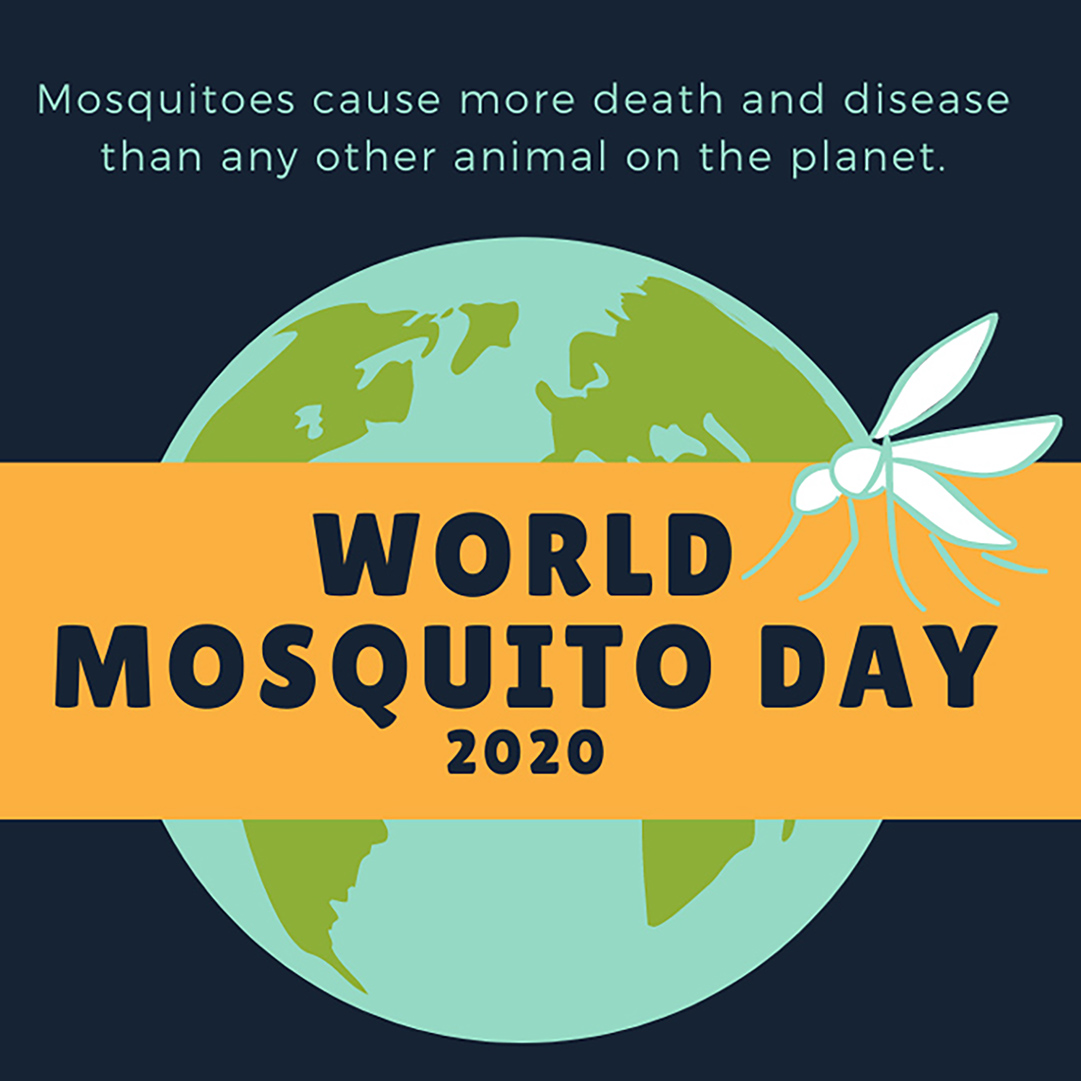 World Mosquito Day : August 20, 2020